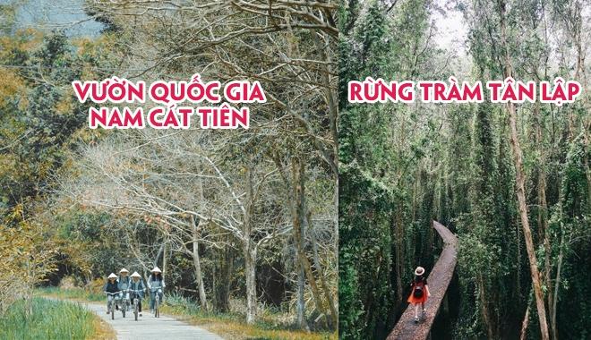 """Những con đường xuyên rừng đẹp ngây ngất làm phượt thủ phải """"xách ba lô lên và đi"""" ngay"""