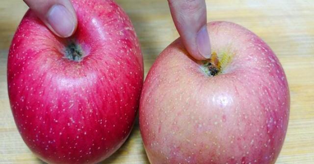 Mua táo, chọn quả rốn to hay nhỏ thì ngọt, người trồng mách chiêu chọn được quả nào cũng ngon