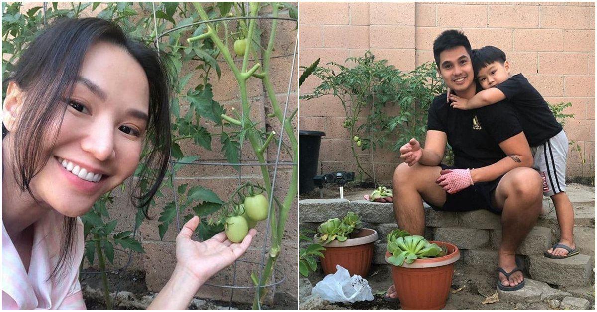 Sang Mỹ đúng lúc dịch, vợ chồng Baggio tranh thủ mua đất làm vườn, trồng cây trái nhỏ xinh
