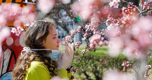 Báo Mỹ: Phát hiện triệu chứng cực kỳ đơn giản để xác định người nghi nhiễm COVID-19 kể cả khi chưa phát bệnh