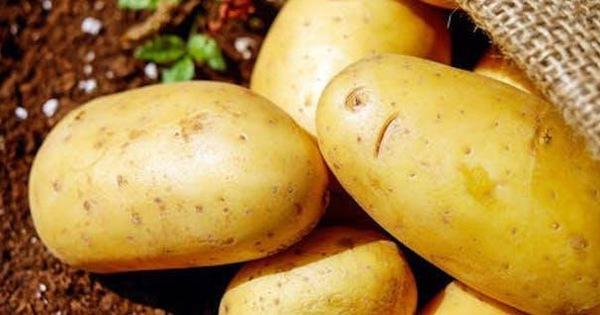 Chỉ 1 ly nước ép khoai tây mỗi ngày cho da sáng, dáng xinh lại chữa bệnh, tăng cường miễn dịch: Chuyên gia nói gì?