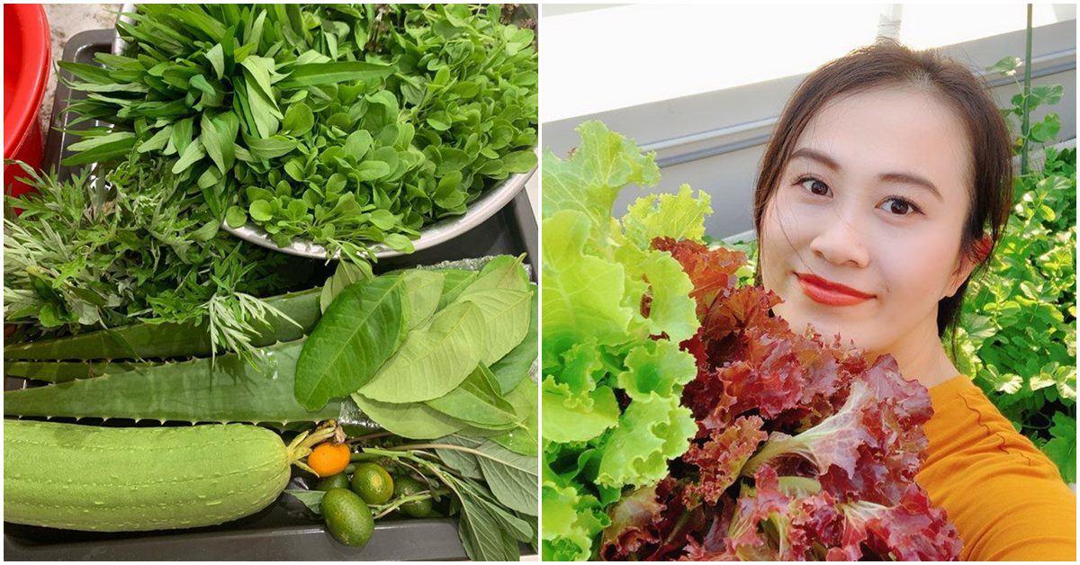 Chỉ mất 50 nghìn hạt giống, mẹ 8X trồng thành vườn rau tốt ngồn ngộn, ăn không hết